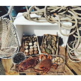 Box crustacés