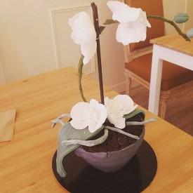 Gâteau 3D Orchidée