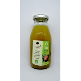 Nectar de Mangue Bio 25cl